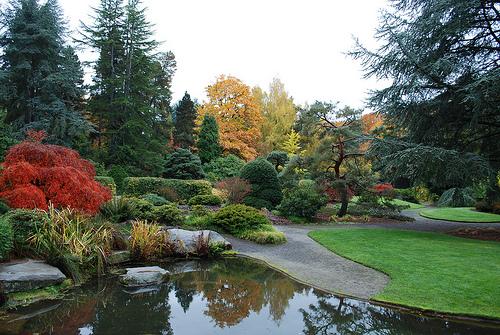 kubota-garden