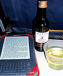 Reading an eBook in flight courtesy of diane cordell via Flickr