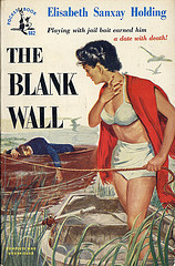 Find Elisabeth Sanxay Holding's The Blank Wall in the Seattle Public Library catalog.