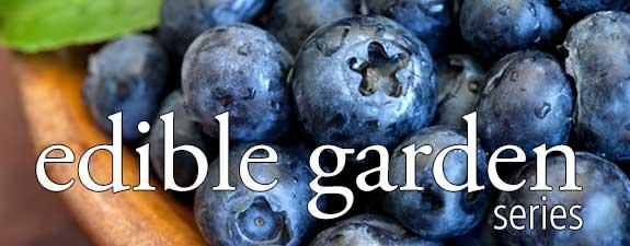 edible_gardening_banner-575x225