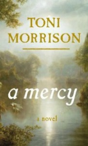 A Mercy in the Library catalog
