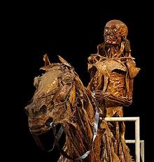 Click here to visit the Musée Fragonard website