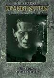 1931 film adaptation of Frankenstein