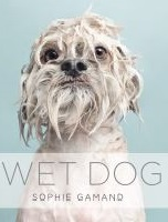 Cover image for Wet Dog