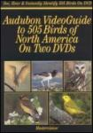 Audubon Videoguide to 505 birds of North America cover image