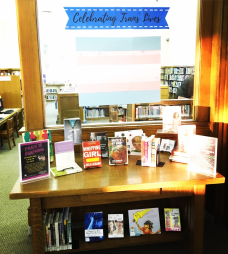 celebrating-trans-lives-display
