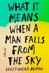 what it means when a man falls sky