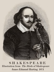 "Image of William Shakespeare, a bird is perched on his let arm. Text reads: Shakespeare, Illustration from ""The Birds of Shakespeare,"" James Edmund Harting 1871"