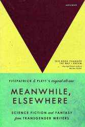 """Book cover for """"Meanwhile, Elsewhere"""""""