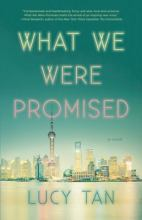 book cover image for what we were promised