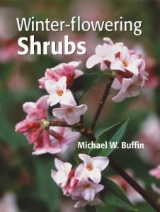Winter Flowering Shrubs by Michael Buffin