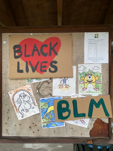 Black Lives Matter Signs in Madison Valley, June 3, 2020
